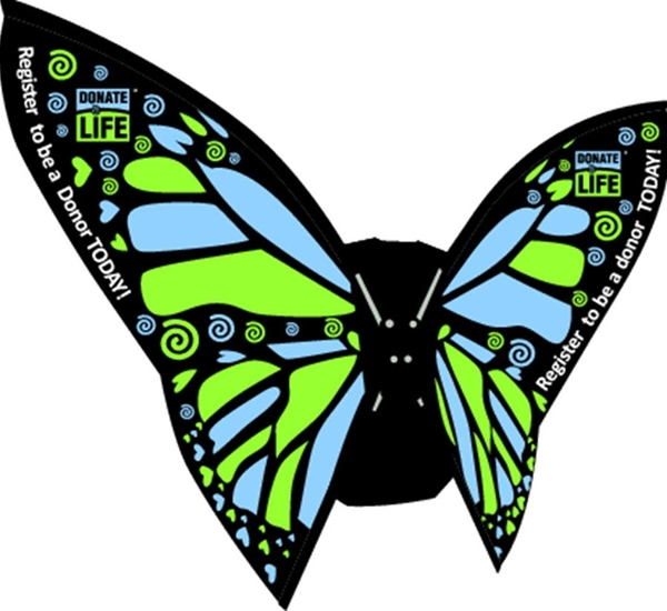 Picture of Butterfly Backpack Wings
